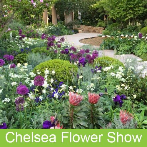 Chelsea-Flower-Show